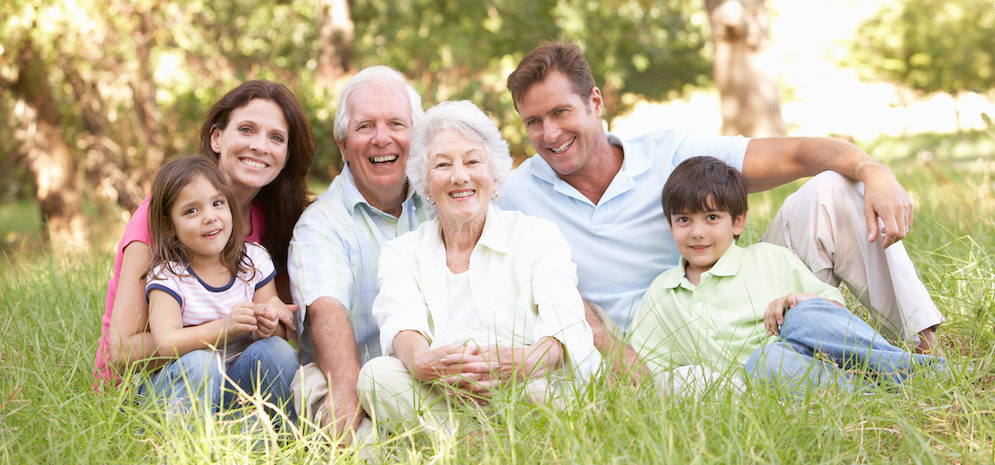Portrait Of Extended Family Group Sitting In Park